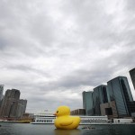 Rubber Duckie travels the World