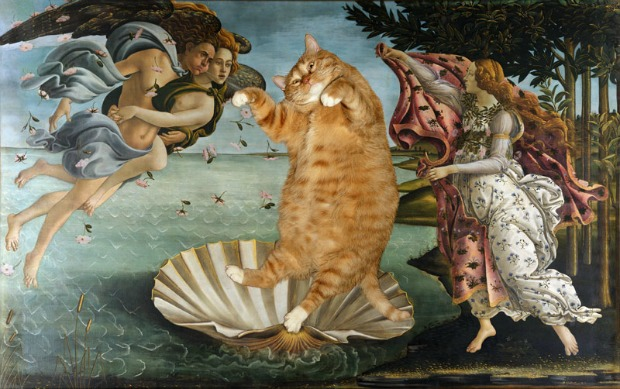 botticelli-the-birth-of-venus-catfeature