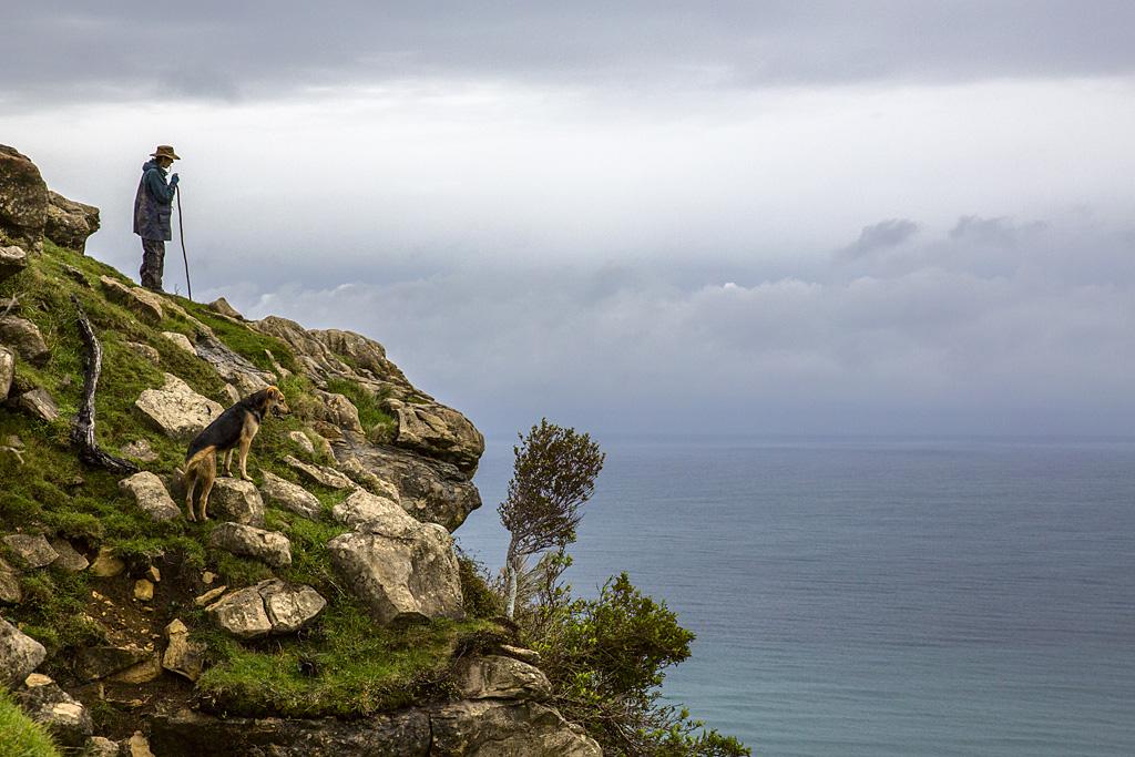 ShepherdontheCliff