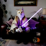 The comfort of taking a break from being you: Tom Broadbent's portraits of Furries in their homes