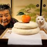 Misao the Big Mama and Fukumaru the Cat: the visual documentation of a friendship