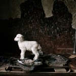 Sheep and the way of nature: a photo series about shepherds in the Caucasus