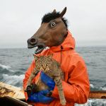 Human/Animals: a portrayal of the many nuances our relationship with animals has