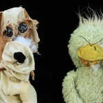 Chewed: photos of dogs' second best friends