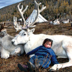 The Way of the Reindeer: photos of the Mongolian Dukha people